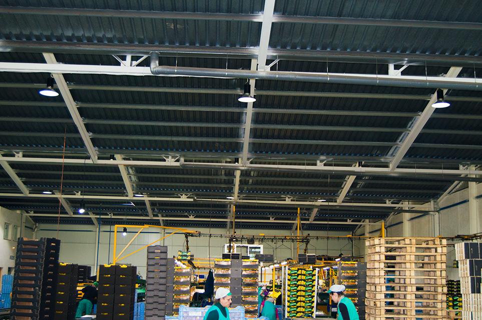 Instalación de equipos de ahorro energético en Frutas Juanito /02